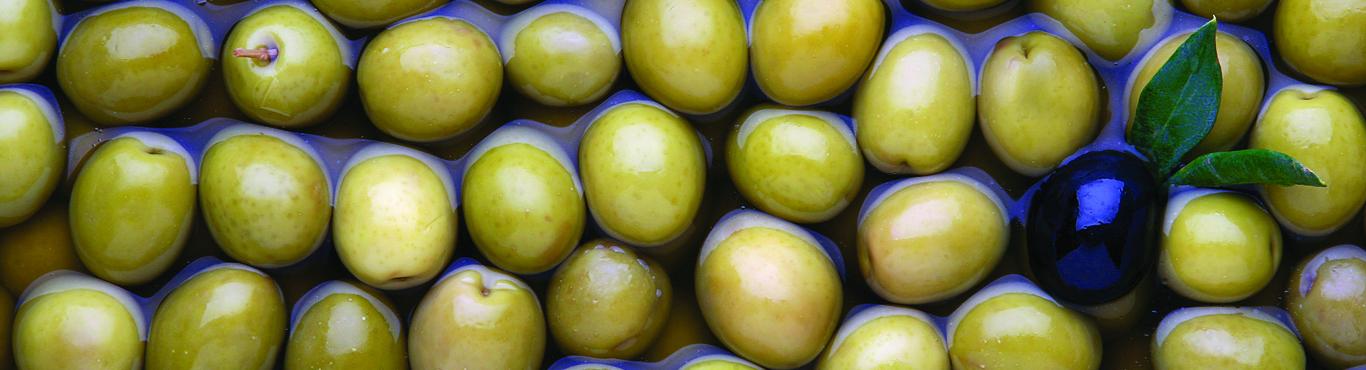 banniere header olives